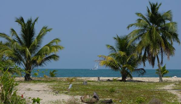 The coast of Placencia...