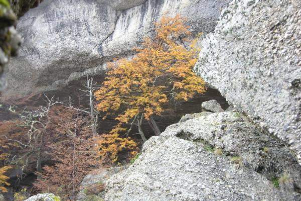 Cueva del Miladon