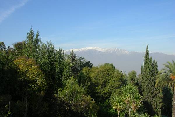 The Andes looming over Santiago