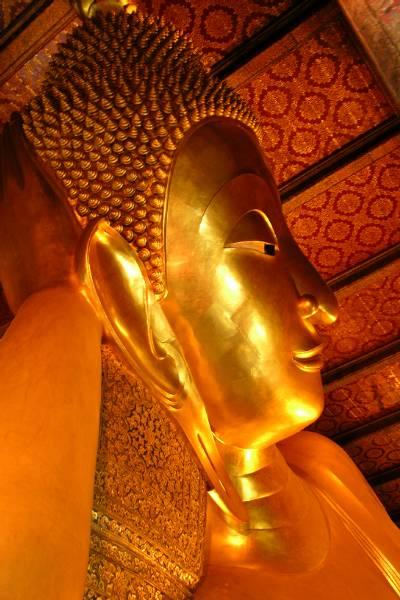 Giant Buddha head